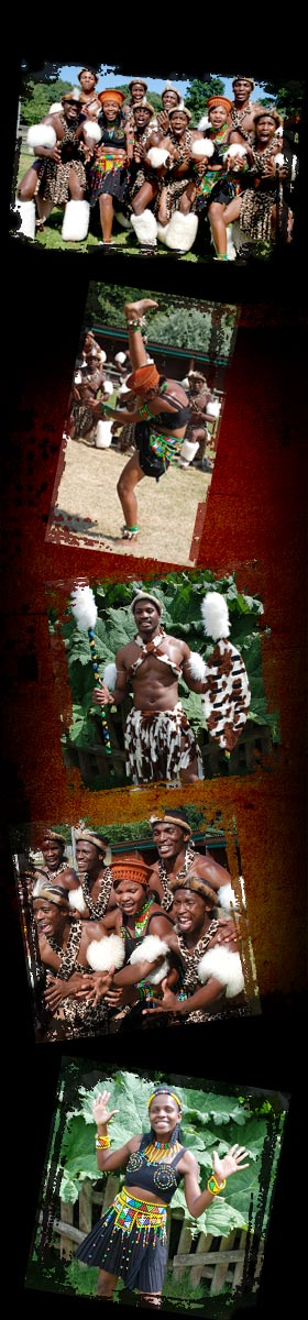 mighty zulu nation home image